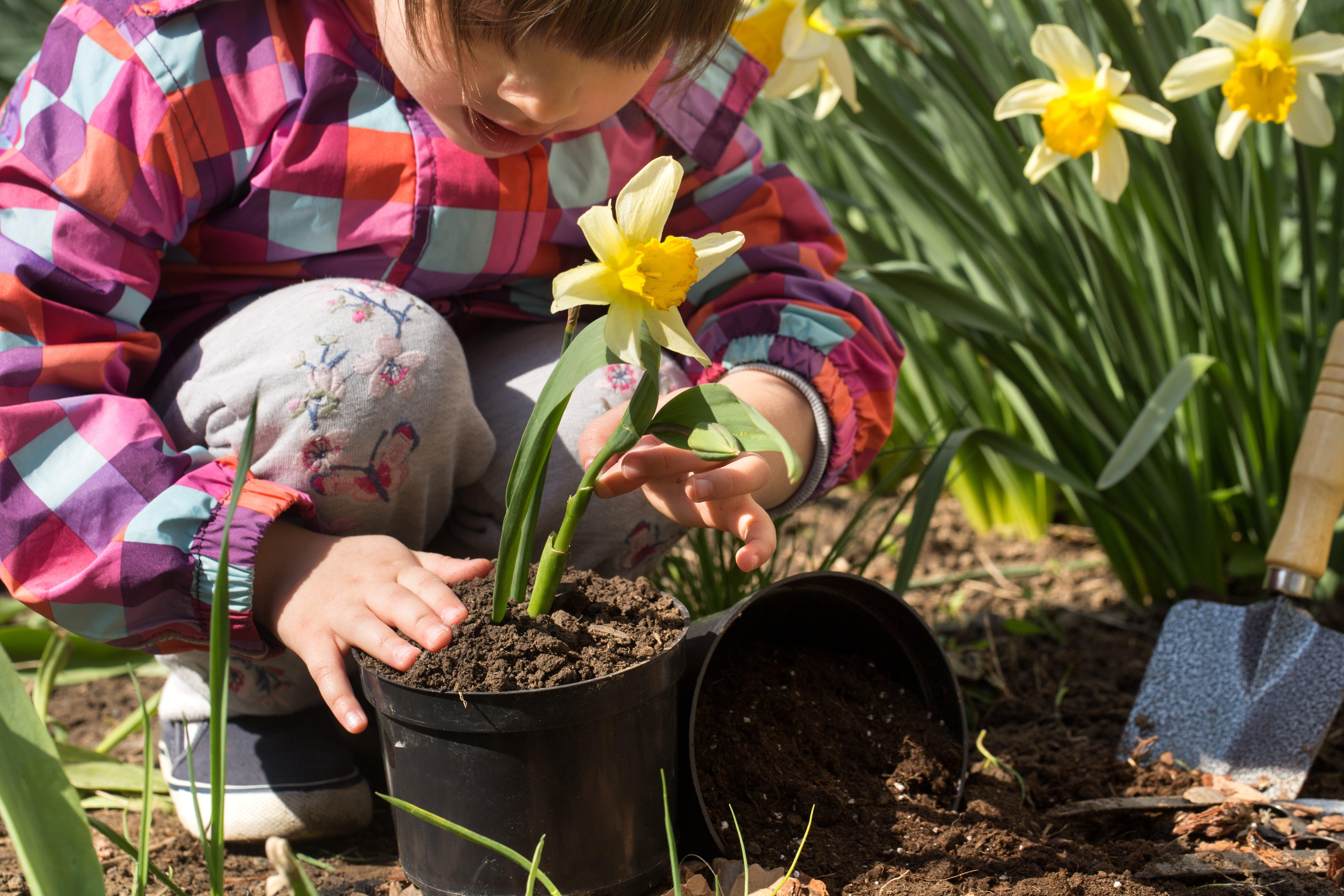 little-girl-planting-flowers-in-the-garden